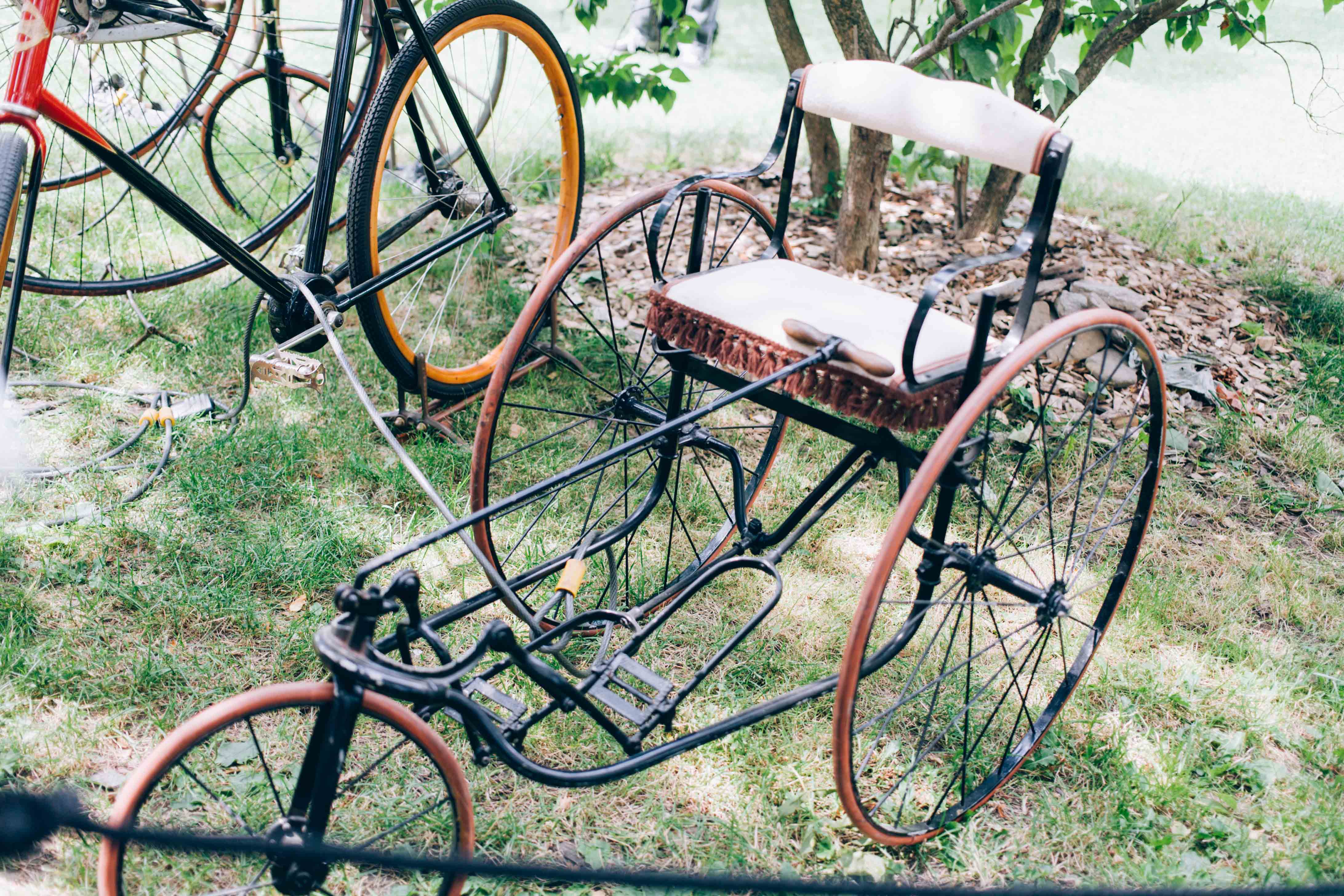 adult antique size tricycle